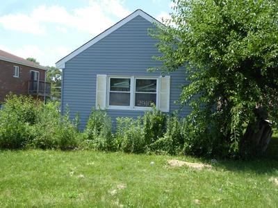 2916 JACKSON AVE, South Chicago Heights, IL 60411 - Photo 2