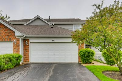 603 HOWARD AVE, East Dundee, IL 60118 - Photo 1