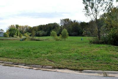 000 MADISON AVENUE & HICKORY STREET, Braidwood, IL 60408 - Photo 1