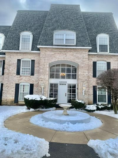 5000 CARRIAGEWAY DR APT 313, Rolling Meadows, IL 60008 - Photo 1