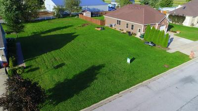 1060 REGENT CT, DIAMOND, IL 60416 - Photo 2