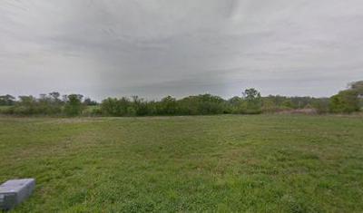 11137 FRANCES CT, Palos Park, IL 60467 - Photo 1
