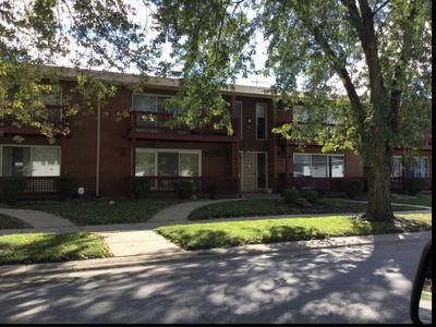 555 N CARROLL PKWY APT 2F, Glenwood, IL 60425 - Photo 1
