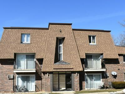 8231 ARCHER AVE APT 9, WILLOW SPRINGS, IL 60480 - Photo 1