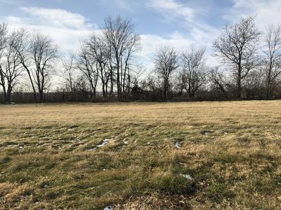 340 CASSIDY CT, Utica, IL 61373 - Photo 1