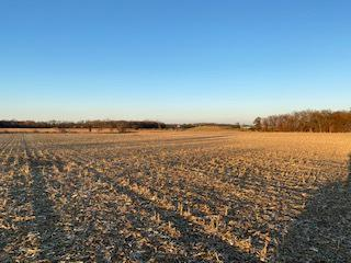 TRACT 41 HIDDEN RIVER 2600 NORTH, Mahomet, IL 61853 - Photo 2