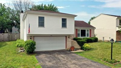 1155 MENSCHING RD, Roselle, IL 60172 - Photo 1