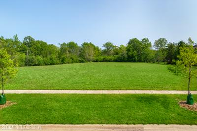 0 N OAK KNOLL ROAD, Lake Forest, IL 60045 - Photo 2