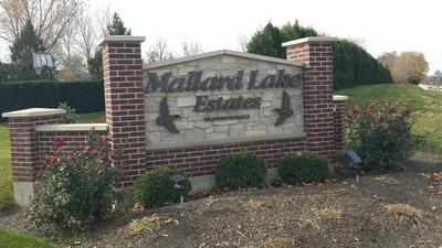 204 MALLARD LN, BLOOMINGDALE, IL 60108 - Photo 1