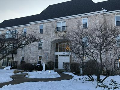 5001 CARRIAGEWAY DR # A307, Rolling Meadows, IL 60008 - Photo 1