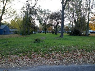 105 E DAGGY ST, TOLONO, IL 61880 - Photo 2