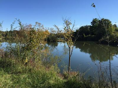 LOT 31 LAKE METONGA TRAIL, GRANT PARK, IL 60940 - Photo 1