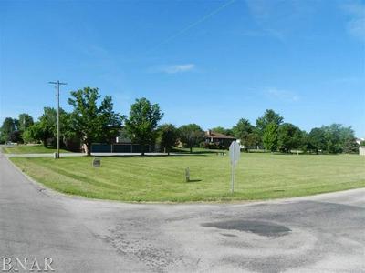 101 W 10TH ST, Gridley, IL 61744 - Photo 2