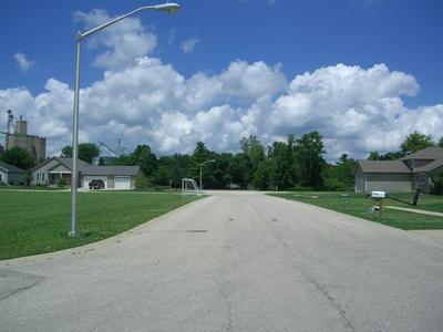 503 LORAINE ST, Earlville, IL 60518 - Photo 2