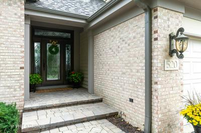 520 VINTAGE DR, Lake In The Hills, IL 60156 - Photo 2