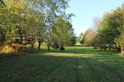 11003 PHEASANT LN, Woodstock, IL 60098 - Photo 2