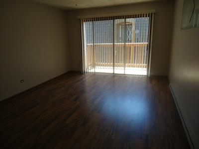 14747 KENTON AVE APT 3C, Midlothian, IL 60445 - Photo 2