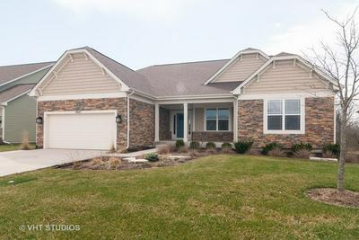 1441 SWINTON CT, Elburn, IL 60119 - Photo 1
