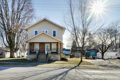 203 E NORTH ST, DANVERS, IL 61732 - Photo 1