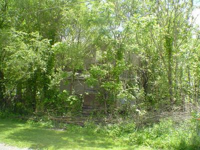 11506 E KEYSER ST, Momence, IL 60954 - Photo 2