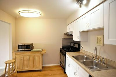 5000 CARRIAGEWAY DR APT 211, ROLLING MEADOWS, IL 60008 - Photo 2