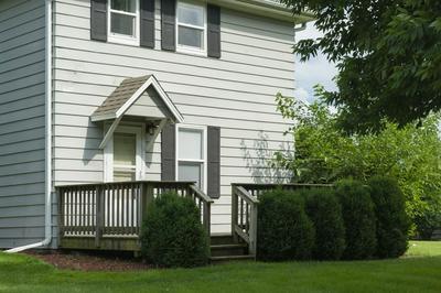 110 N JACKSON ST, PHILO, IL 61864 - Photo 2