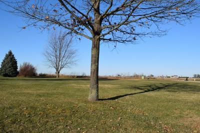 1123 WHITETAIL LN, Sandwich, IL 60548 - Photo 1
