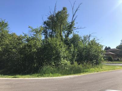 LOT 1 FOREST & MCDONALD AVENUE, West Chicago, IL 60185 - Photo 2