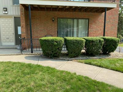 623 N CARROLL PKWY APT 101, Glenwood, IL 60425 - Photo 2