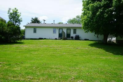 307 N WILLIS ST, Heyworth, IL 61745 - Photo 2