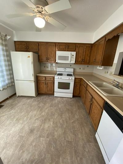 803 SHAGBARK RD # 803, New Lenox, IL 60451 - Photo 2