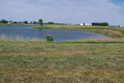 135 STONE LAKE DRIVE, Fairbury, IL 61739 - Photo 2