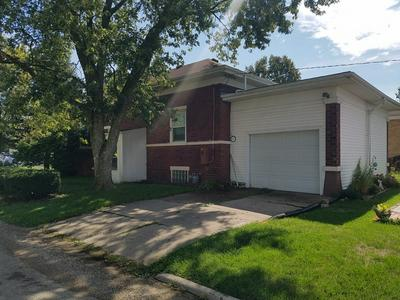 220 N CHESTNUT ST, WENONA, IL 61377 - Photo 2