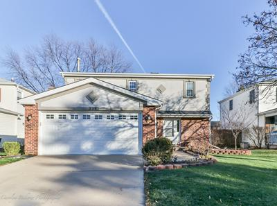 735 RANDI LN, Hoffman Estates, IL 60169 - Photo 1