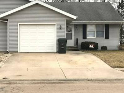 250 N SCHOOL ST # 250, DIAMOND, IL 60416 - Photo 1