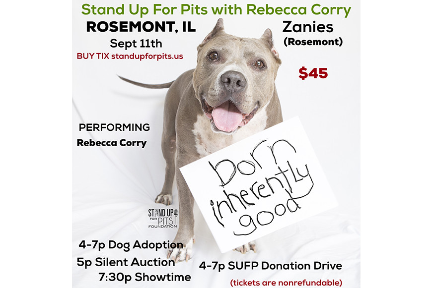 Rosemont Il Dog Show