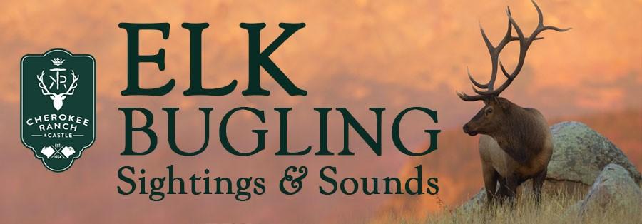 Elk Bugling Sightings & Sounds! Bring Your Own Dinner & Presentation