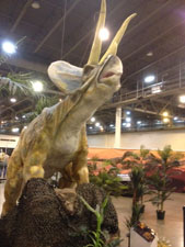 The majestic triceratops towers over the show floor