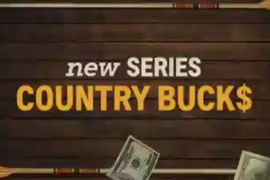 Country Bucks Sizzle