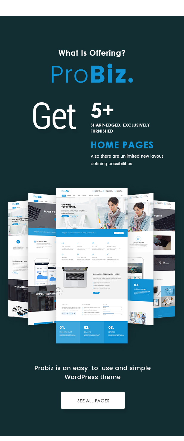 Probiz - An Easy to Use and Multipurpose Business and Corporate WordPress Theme - 2