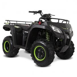 ATV 250 Negro / Verde