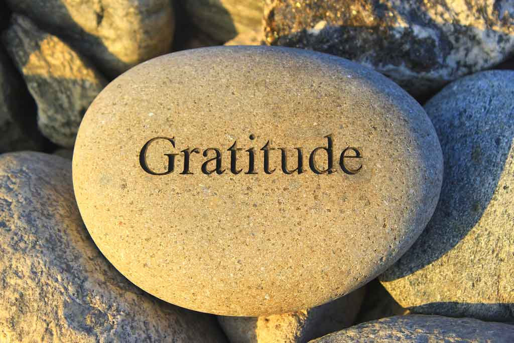 6 Daily Habits of Gratitude That Will Attract Joy into Your Life