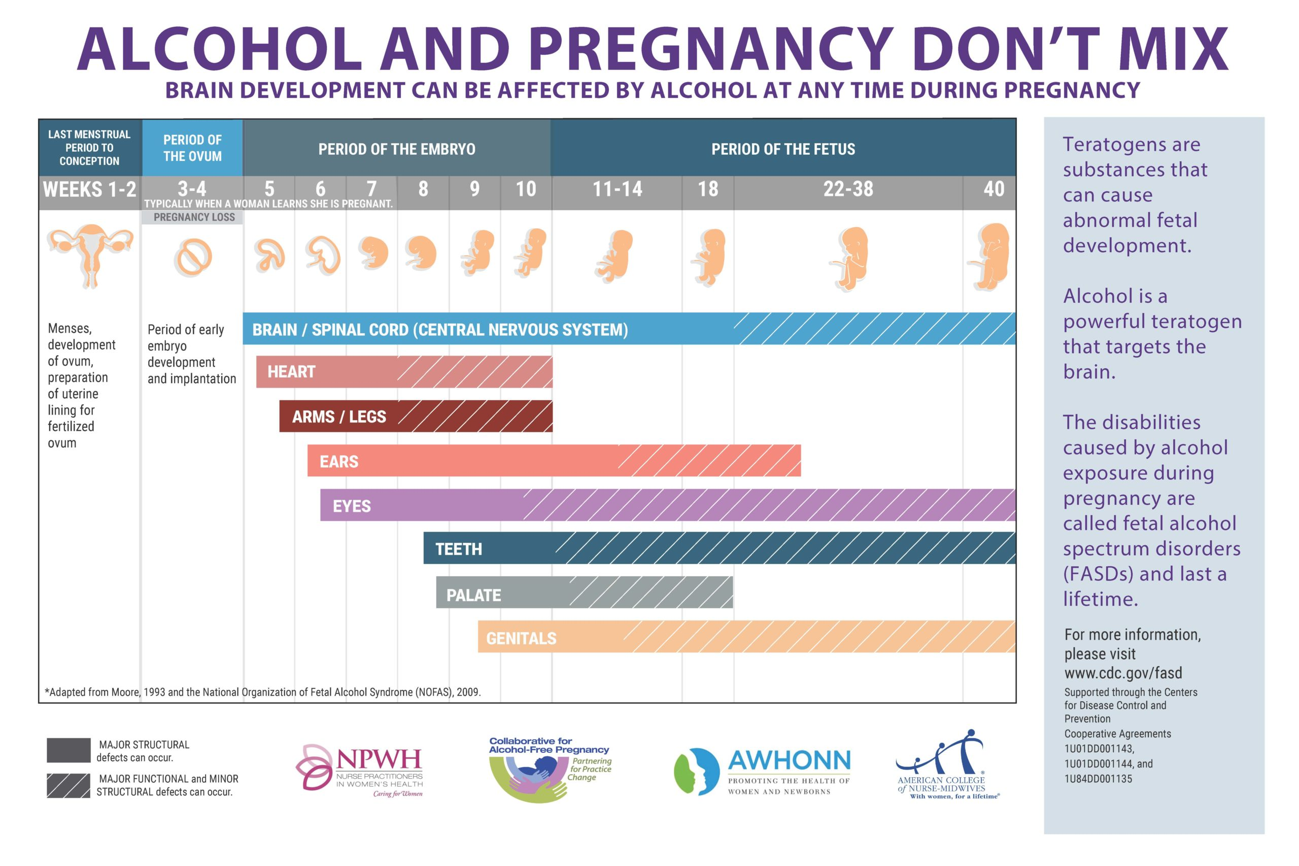 Alcohol and Pregnancy Don't Mix Poster