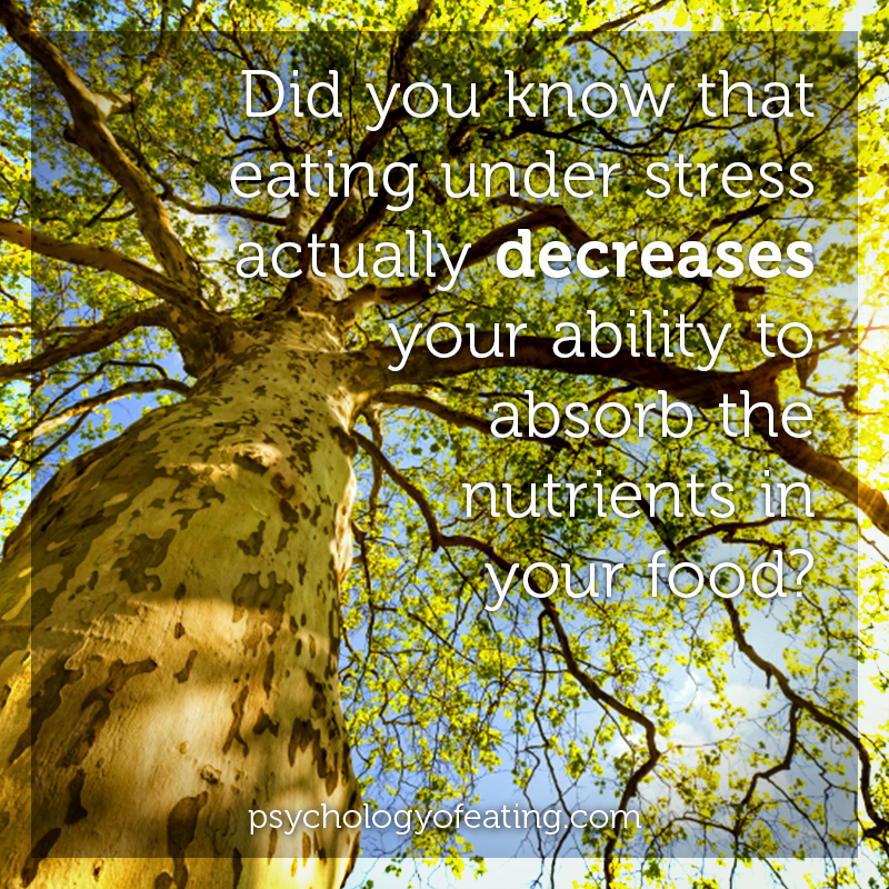 Did you know that eating under stress actually decreases your ability to absorb the nutrients in your food #health #nutrition #eatingpsychology #IPE