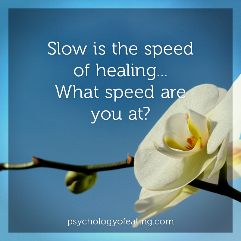Slow is the speed of healing. #health #nutrition #eatingpsychology #IPE