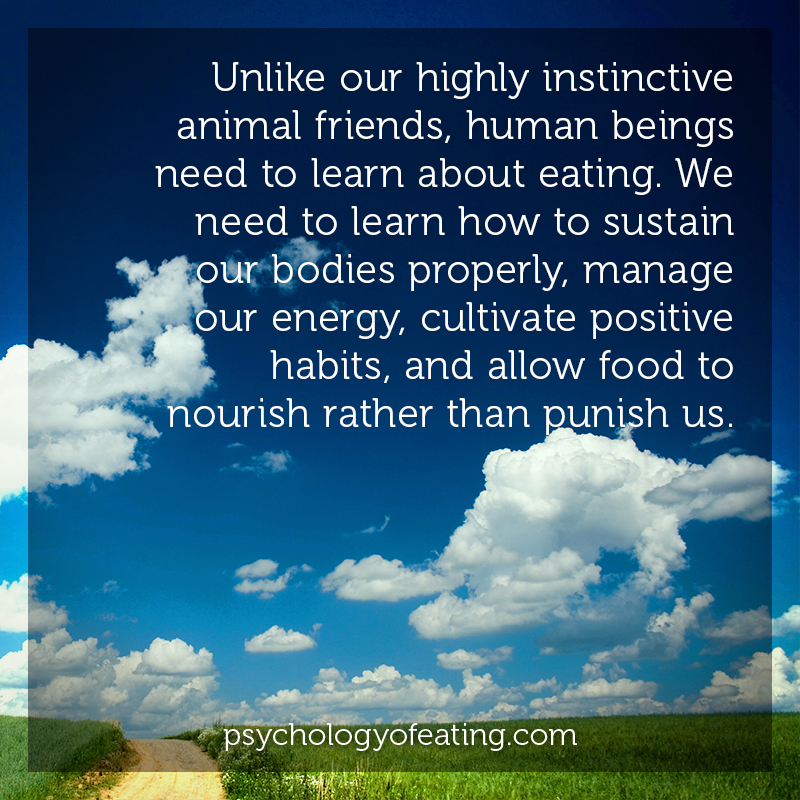 Unlike our highly instinctive animal friends, human beings need to learn about eating. We need to learn how to sustain our bodies properly, manage our energy, cultivate positive habits, and allow food to nourish rather than punish us#health #nutrition #eatingpsychology #IPE