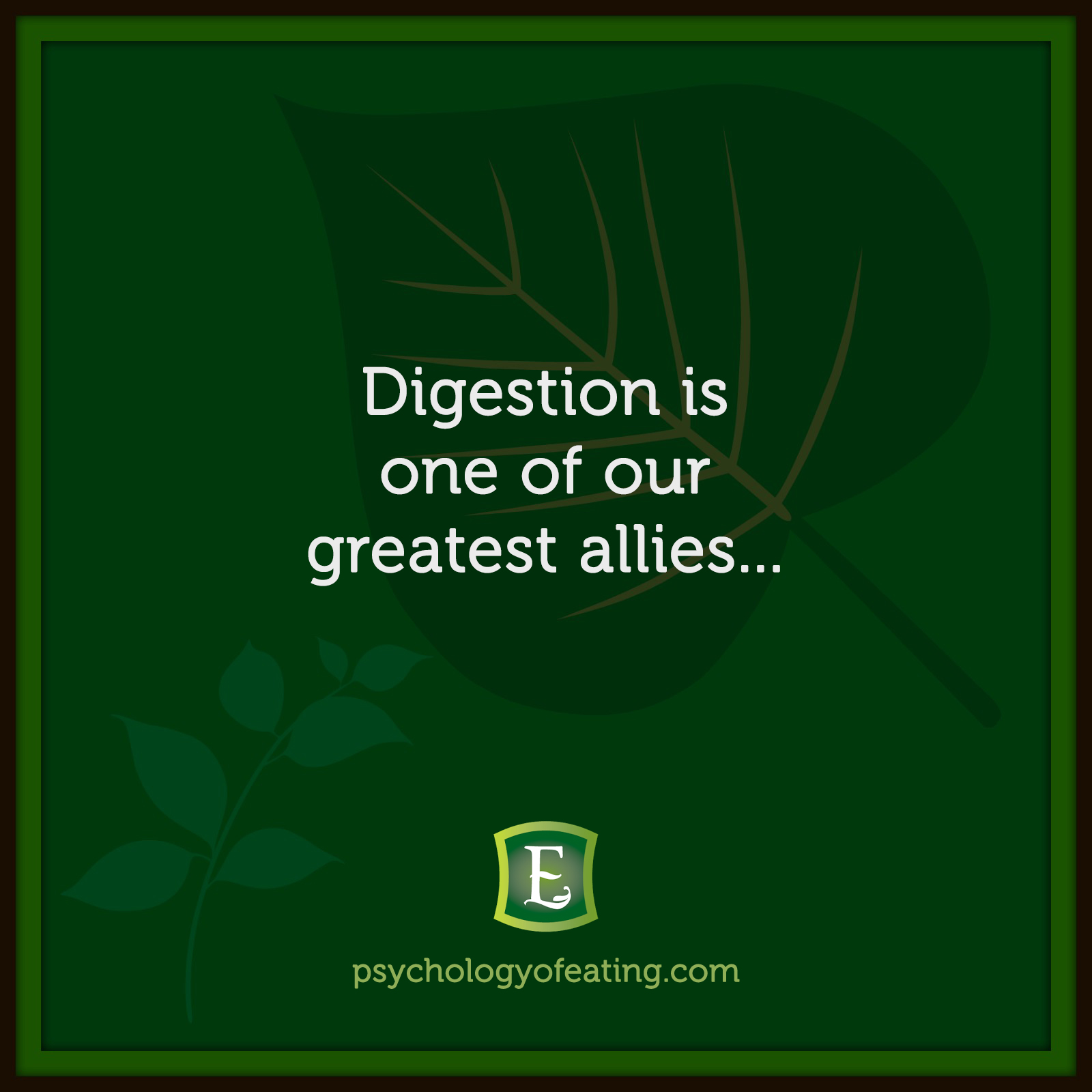 Digestion is one of our greatest allies…#health #nutrition #eatingpsychology #IPE
