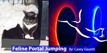feline-portal-jumping-slide450