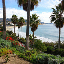 Exclusive Properties in Laguna Beach