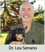 Dr. Lou Serrano - Academy Animal Hospital